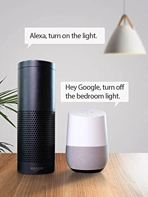 Works with Amazon Alexa & Google Home Assistant
