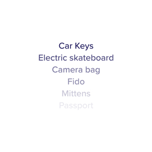 Car keys, skateboard, camera bag, passport