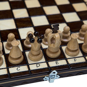 chess draughts