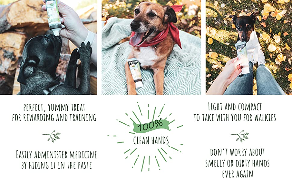 dogs, pets, pet food