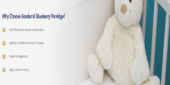 no artificial flavours colours preservatives real fruit pieces blueberries vegetarians
