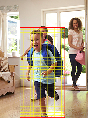 Customizable Motion Detection