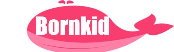 bornkid handheld games