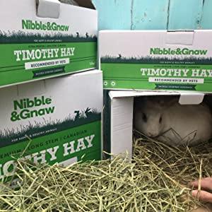 green Nibble&Gnaw Timothy Hay for Rabbits Guinea Pigs & Hamsters long stem Canadian feeding hay nutritious 2nd Cut lovely fresh Ultra-premium 0.5Kg