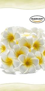 Guirlande lumineuse à fleurs