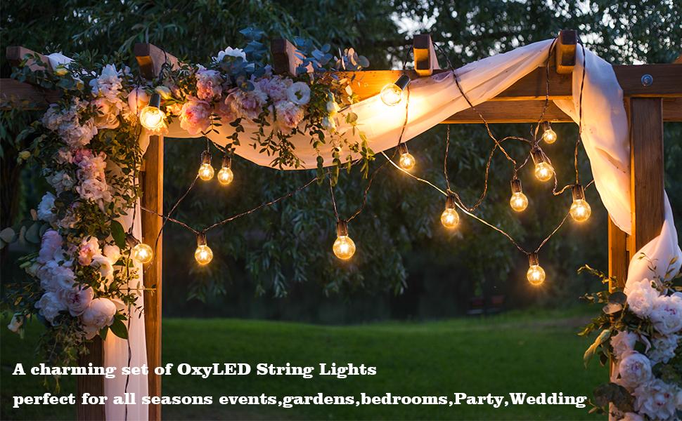 brand new fd753 d1ce9 OxyLED Outdoor Garden String Lights, 2 Packs 25ft G40 Garden Patio Outside  String Lights,Waterproof Indoor/Outdoor String Lights, Great Garden Patio  ...