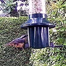 wild bird feeder pestoff roamwild