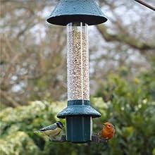 bird feeder with robin