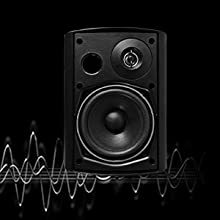 bluetooth indoor speaker