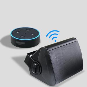 Indoor Bluetooth Speaker