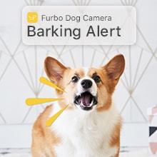 Furbo Barking alert