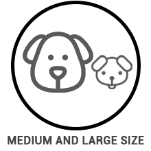 Double-Sided Pet Bed