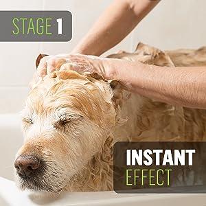 Dog Oatmeal shampoo ProGroom