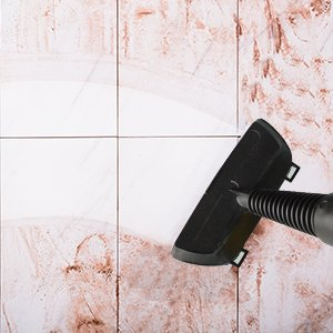 mold removal steam cleaner