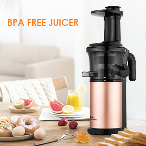 Amzdeal Slow Juicer Masticating Juicer Machine Cold Press Juicer with Reverse Function and Quiet Motor, Support for Ice Cream and Juice, BPA Free, 40