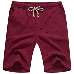 Cotton Casual Classic Fit Summer Shorts