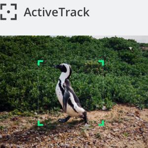 Active Track