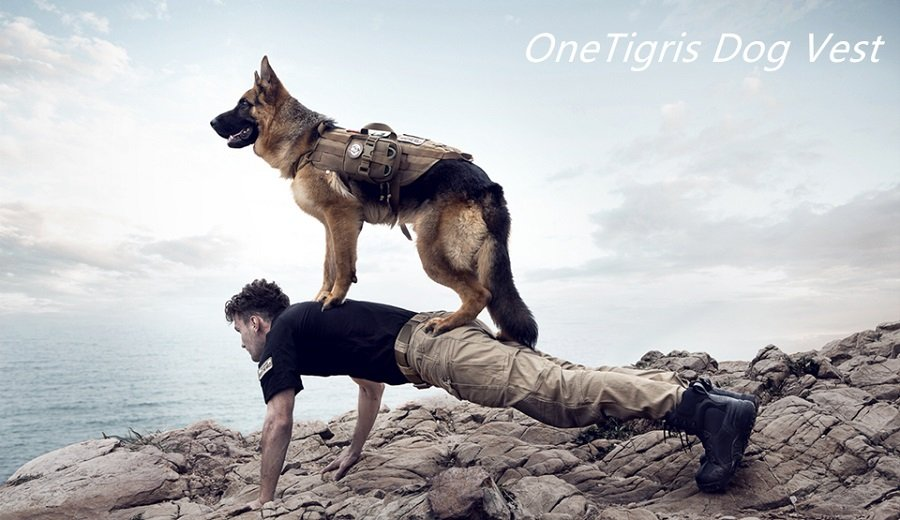 Onetigris Dog Training Molle Harness Vest With Simple