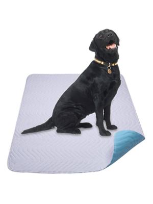 Si su perro orina correctamente en la almohadilla, por favor dé una recompensa