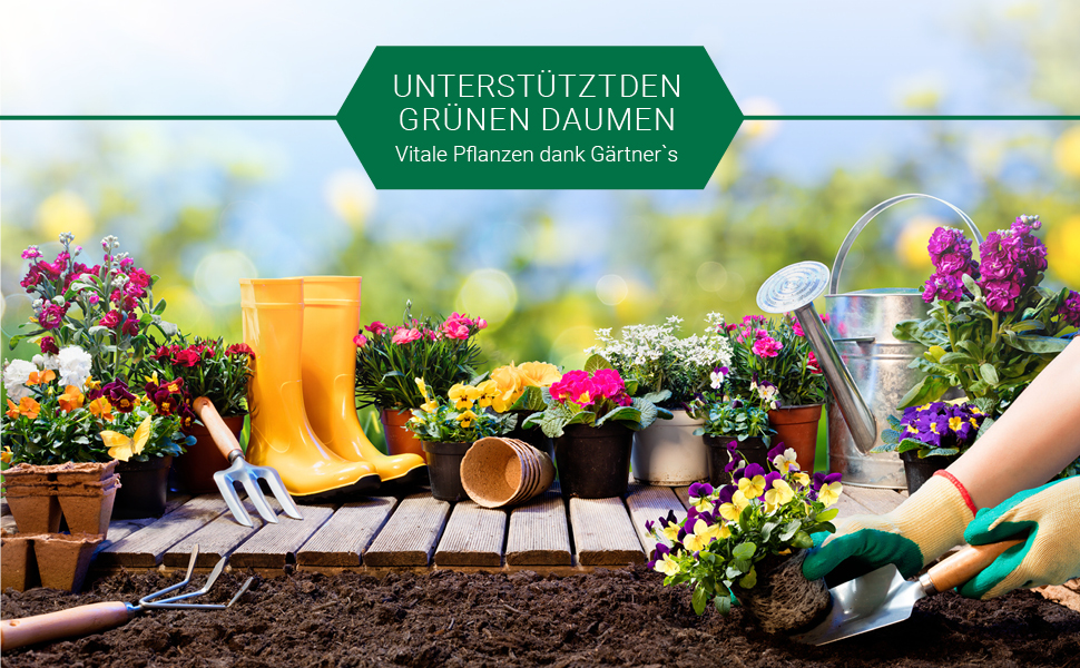 Gärtner/'s Rasennachsaat-Erneuerung 1 kg Rasen Rasensaat Saat Rasensamen Gräser