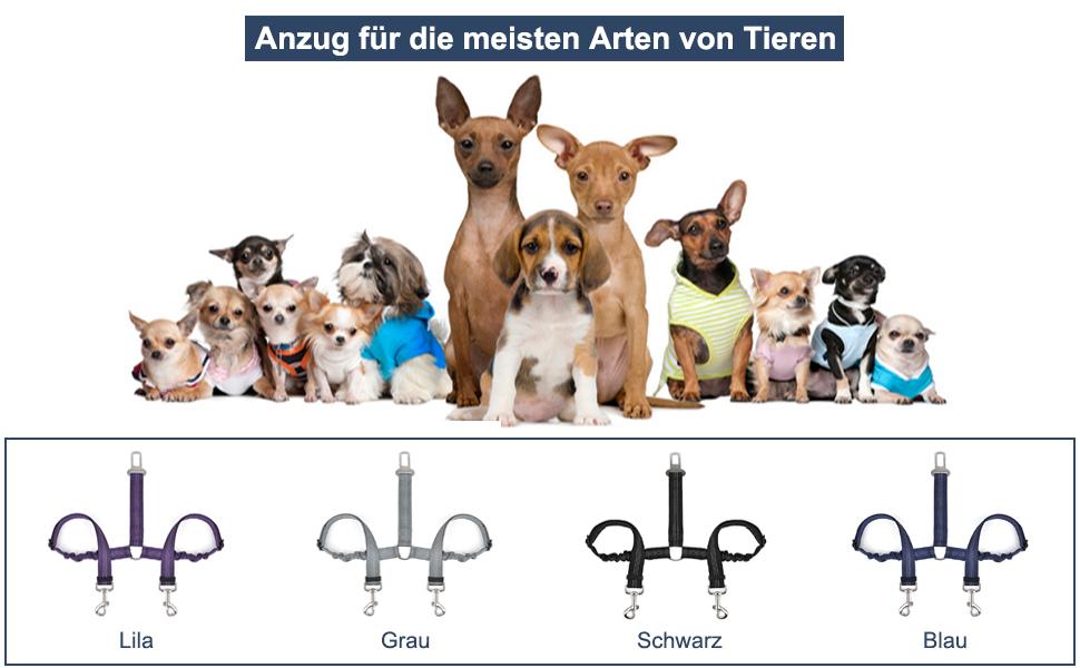 SlowTon Double Hund Sicherheitsgurt Dual Pet Auto Sicherheitsgurt ...