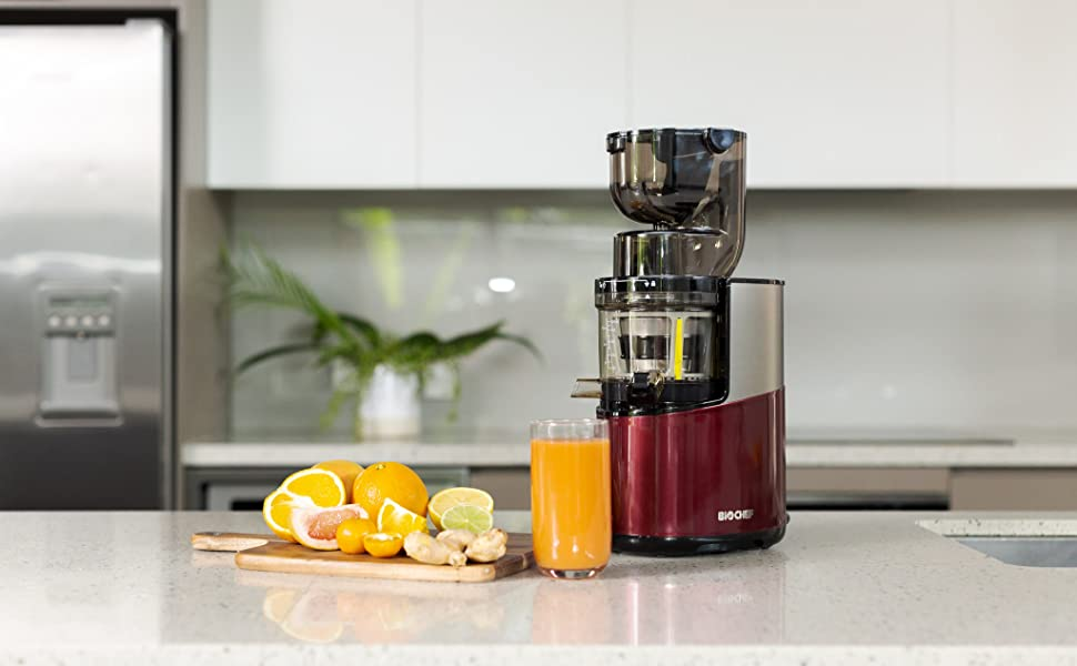 BioChef Altas Entsafter Whole Slow Juicer Pro Ultra