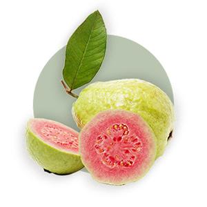 Feine Früchte