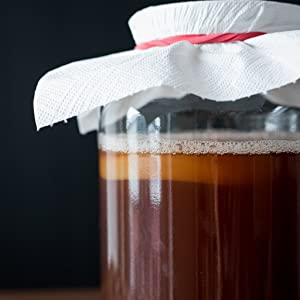 scoby mother