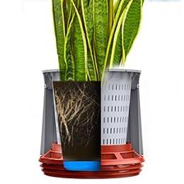 airy hochwirksame luftreinigung mit zimmerpflanzen in schneewei hot chili rot. Black Bedroom Furniture Sets. Home Design Ideas