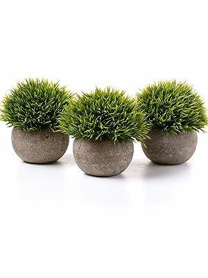 artificial grass plants