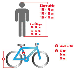 Galano Giro d'Italia Rennrad 700c 28 Zoll Fahrrad Bike