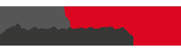 Bullwing Logo