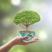 Qualitaet versorgung umwelt umweltschutz umweltbewusst umweltbewusssein schonend natur naturprodukt