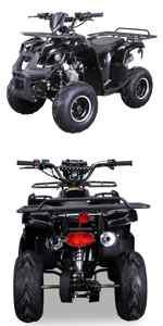 kinder, quad, miniquad, elektro, actionbikes, motors, kinderquad, farmer