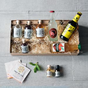 Cocktail-Set mit Elephant Gin