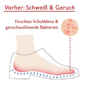 Vor Zederna feuchtes Schuhklima und geruchsauslösende Bakterien