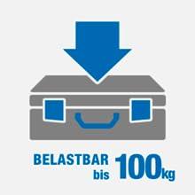 belastbar 100kg lboxx