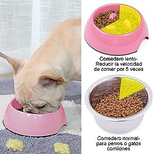 Reducir la velocidad de su mascota cuando está comiendo. A su amiguito también le gustaría mantenerse en forma y tener buen apetito para cada cena.
