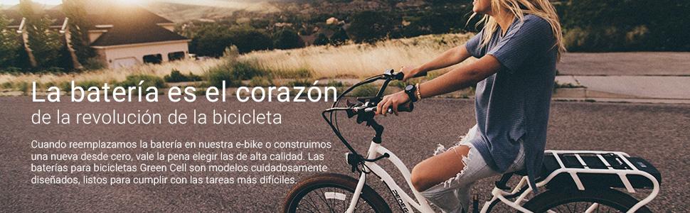 GC® Batería E-Bike 36V 20.3Ah Bicicleta Eléctrica Rear Rack Li-Ion con Celdas Panasonic y Cargador Crussis Kymco HEBB Montante Cone: Amazon.es: Electrónica