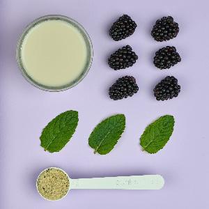 Purition Batido de Proteínas Veganos de Grosella Negra (500g). Batido para el desayuno sin lácteos