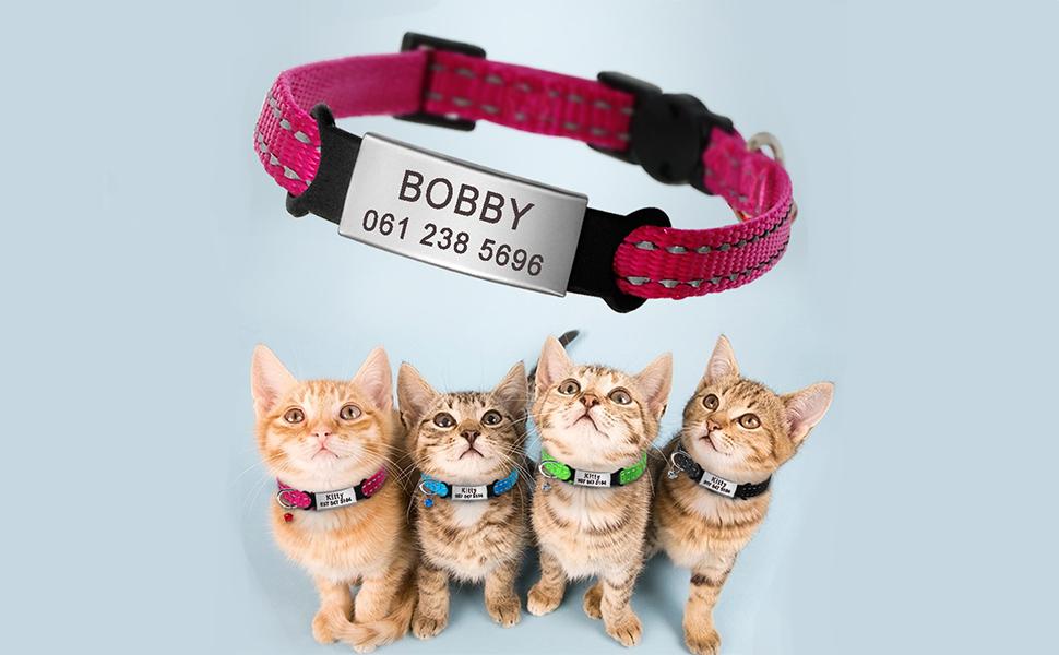 Didog - Collar para gatos con placa de acero inoxidable personalizable, reflectante, sin ruido, deslizable, para gatos y perros pequeños: Amazon.es: Productos para mascotas