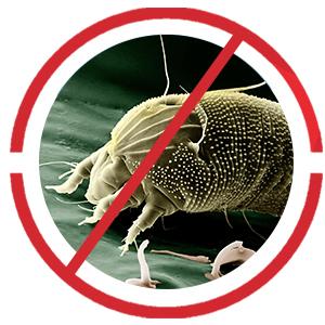 El protector de colchón Dreamzie protege contra los alérgenos, los ácaros, las bacterias, el sudor, la orina y cualquier otro fluido