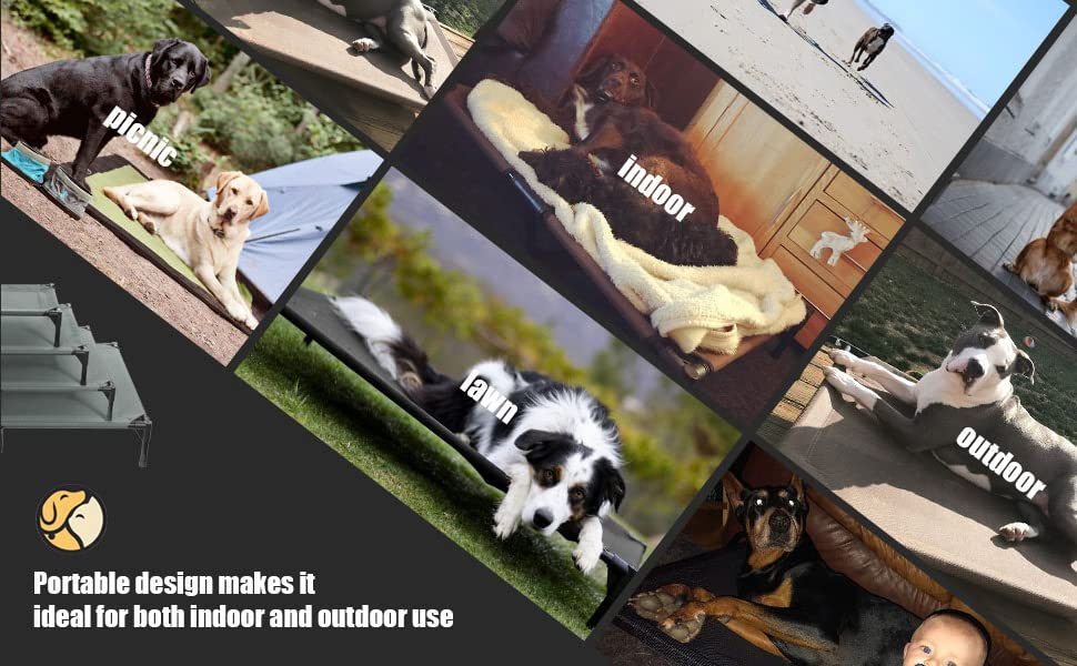 Durmiendo en el Go! Las camas elevadas para perros son livianas y fáciles de montar, lo que las convierte en cunas perfectas para viajar.