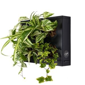 Mini Jardin Vertical Blanco para 6 Plantas con Sustrato Natural ...