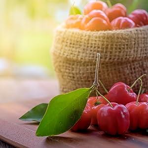 La vitamina C es muy rica en polifenoles, antocianianas, quercetina, etc.; antioxidantes que nos ayudan a prevenir infecciones y ralentizan el proceso de ...