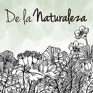 Suplemento Menopausia Vegavero® | Lúpulo + Aceite de Onagra + Salvia + Manzanilla + Melisa | 120 Cápsulas | Sofocos + Sudoración + Dolor de Cabeza | ...