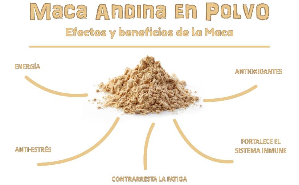 Beneficios Maca Andina en polvo