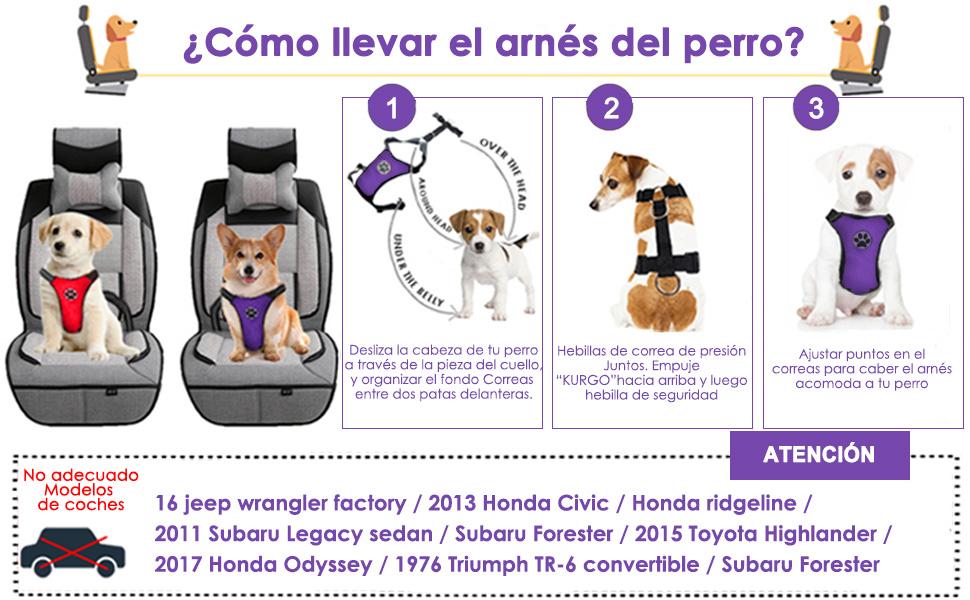 SlowTon Arnés de Coche para Perro con Correa de Conector ...
