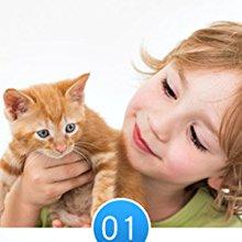 4 funciones para Legendog juguete para gatos set