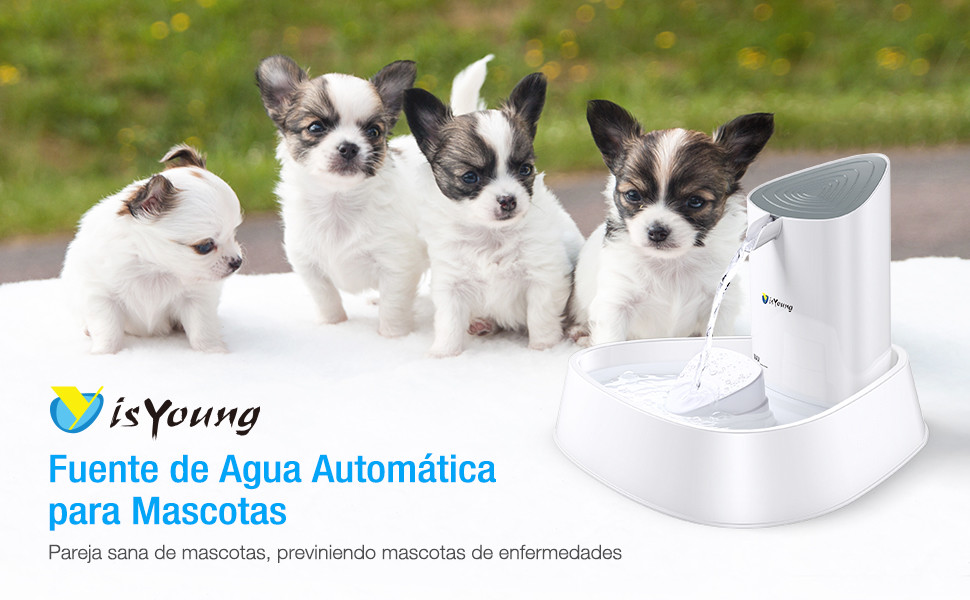 IsYoung Fuente de agua - Dispensador de agua para mascotas multifuncional e innovador